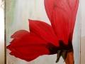 Amaryllis in rot von Tina, angelehnt an Heidi Gerstner, in der Malschule Maluck