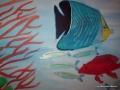 fische-01 von Anne