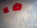 02 Ein Mohnbild in Acrylfarbe von Anne entsteht in der Malschule Maluck