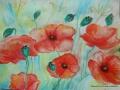 Ein sommerliches Aquarell mit Mohnblumen von Aline, Malschule Maluck