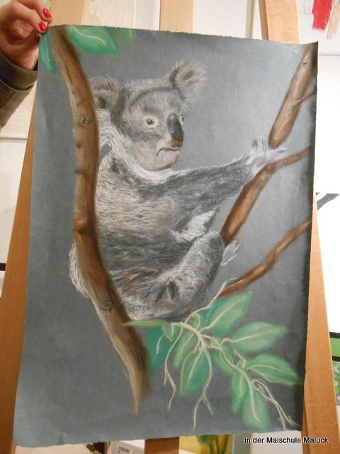 043Ein Koala  in Pastellkreide von Aline in der Malschule Maluck